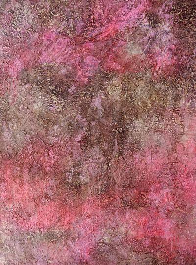 La Vida en Rosa - Obra de Coqui Vera